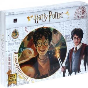 Laço Harry Potter 250 Parça Çocuk Puzzle