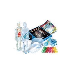 Clementonı Bilim ve Oyun- İnsan Vücudu 64457