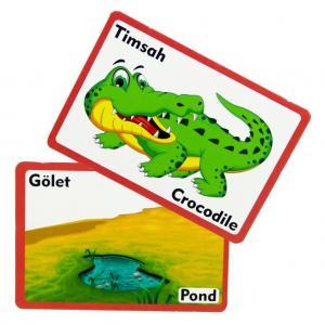 Flash Cards Nerede Yaşarlar Eğitici Oyuncak